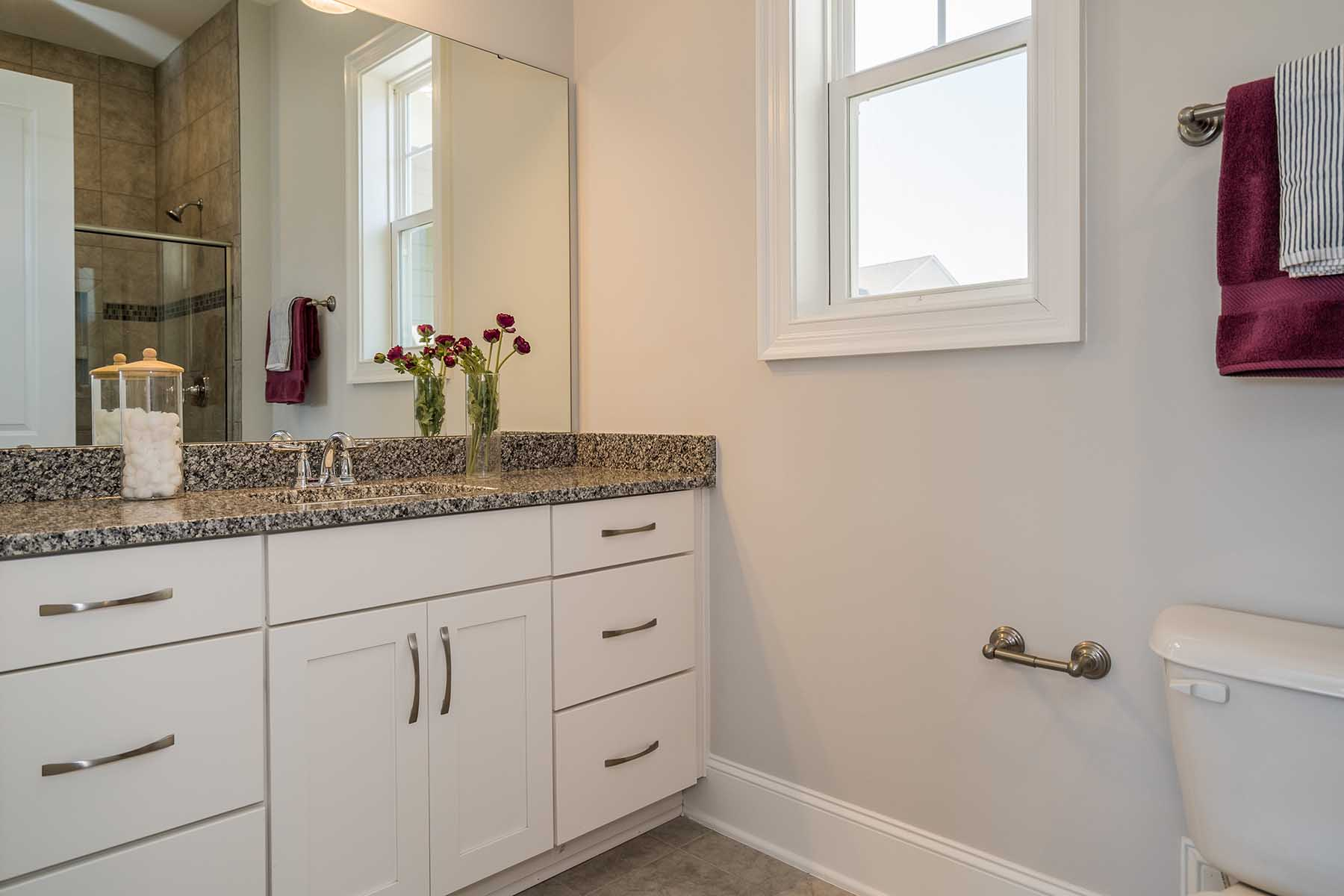 Guest Bathroom Ideas With Pleasant Atmosphere: 301 Hardy Ivy Way Holly Springs, NC 27540