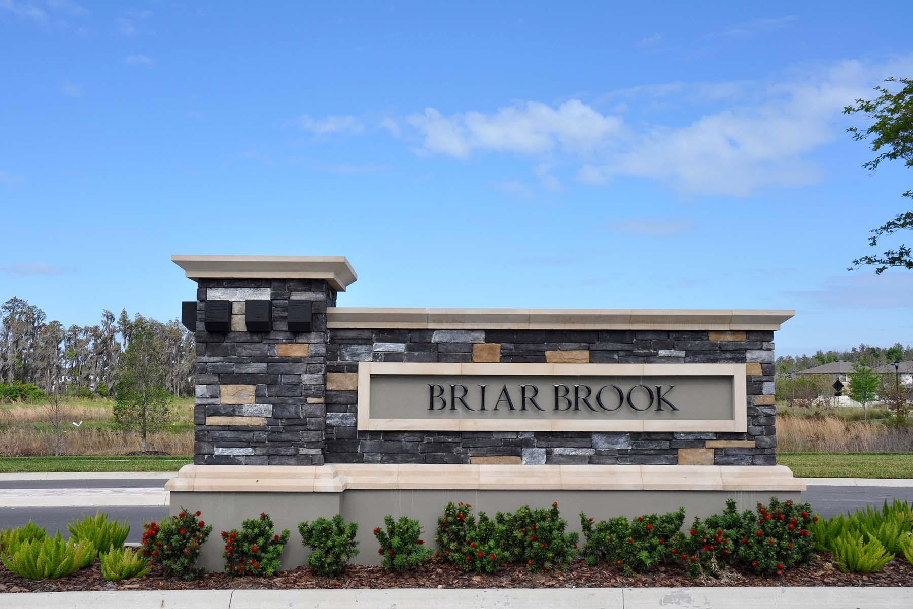 Briarbrook Entrance