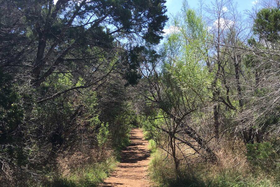 Georgetown Trails