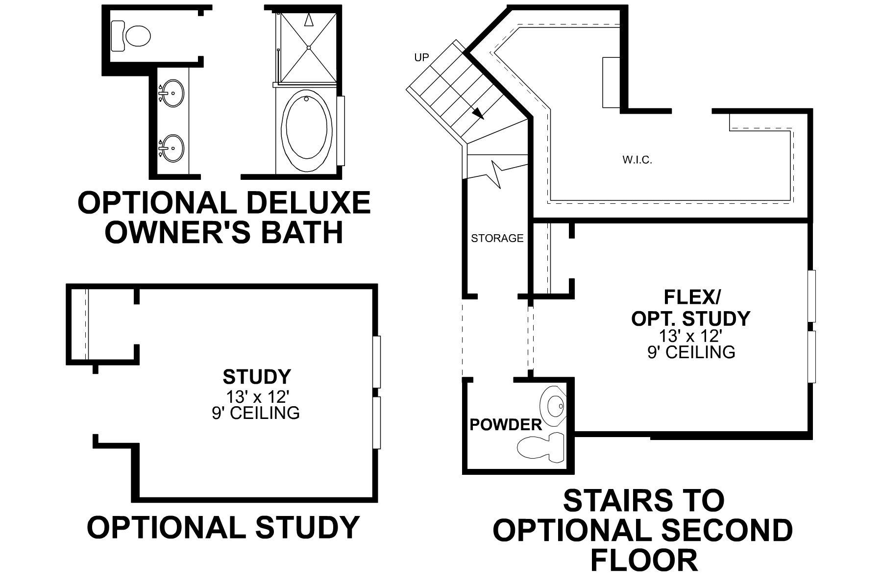 Edmonds First Floor Options