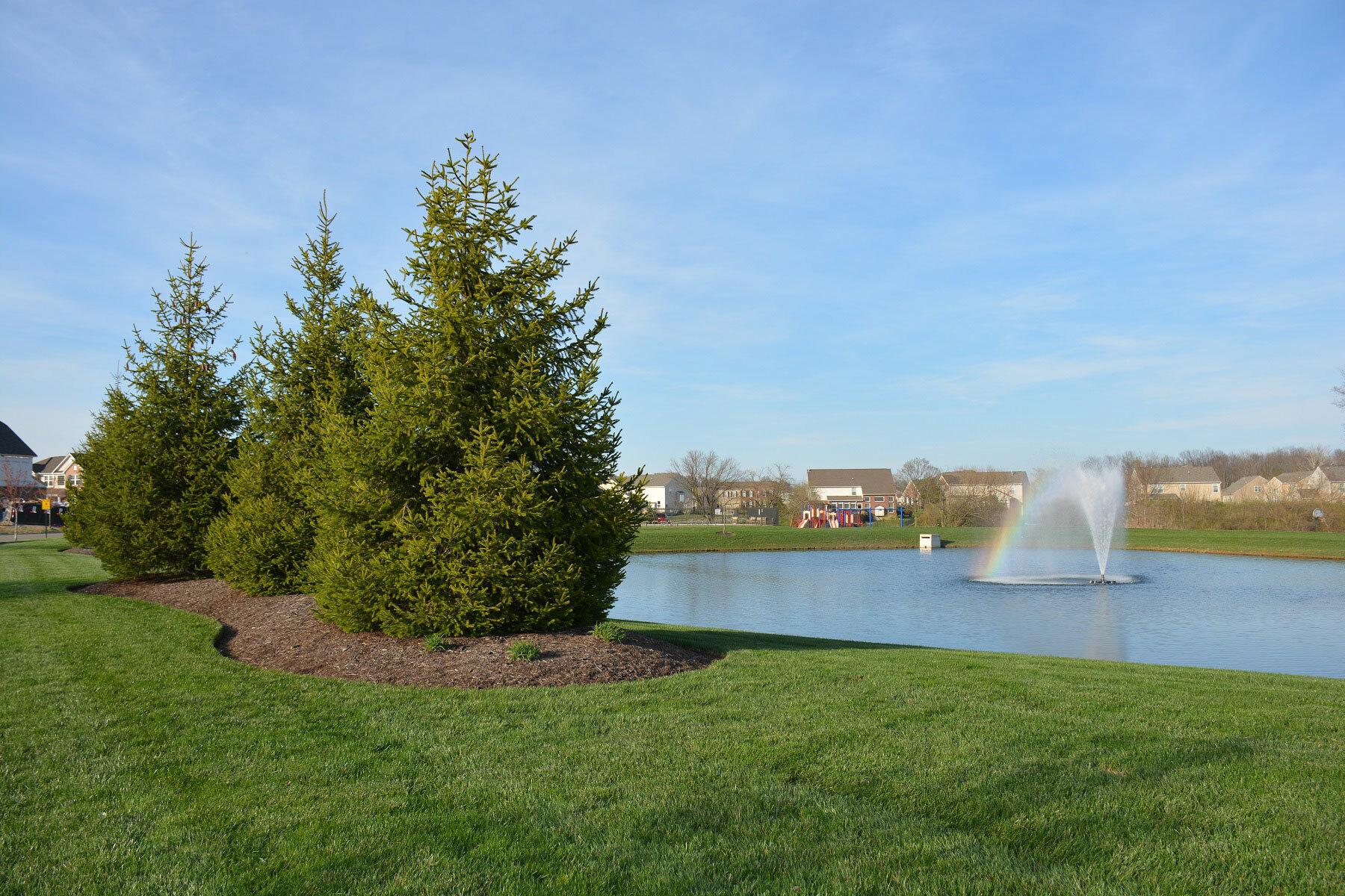 Trails of Shaker Run Estates Pond
