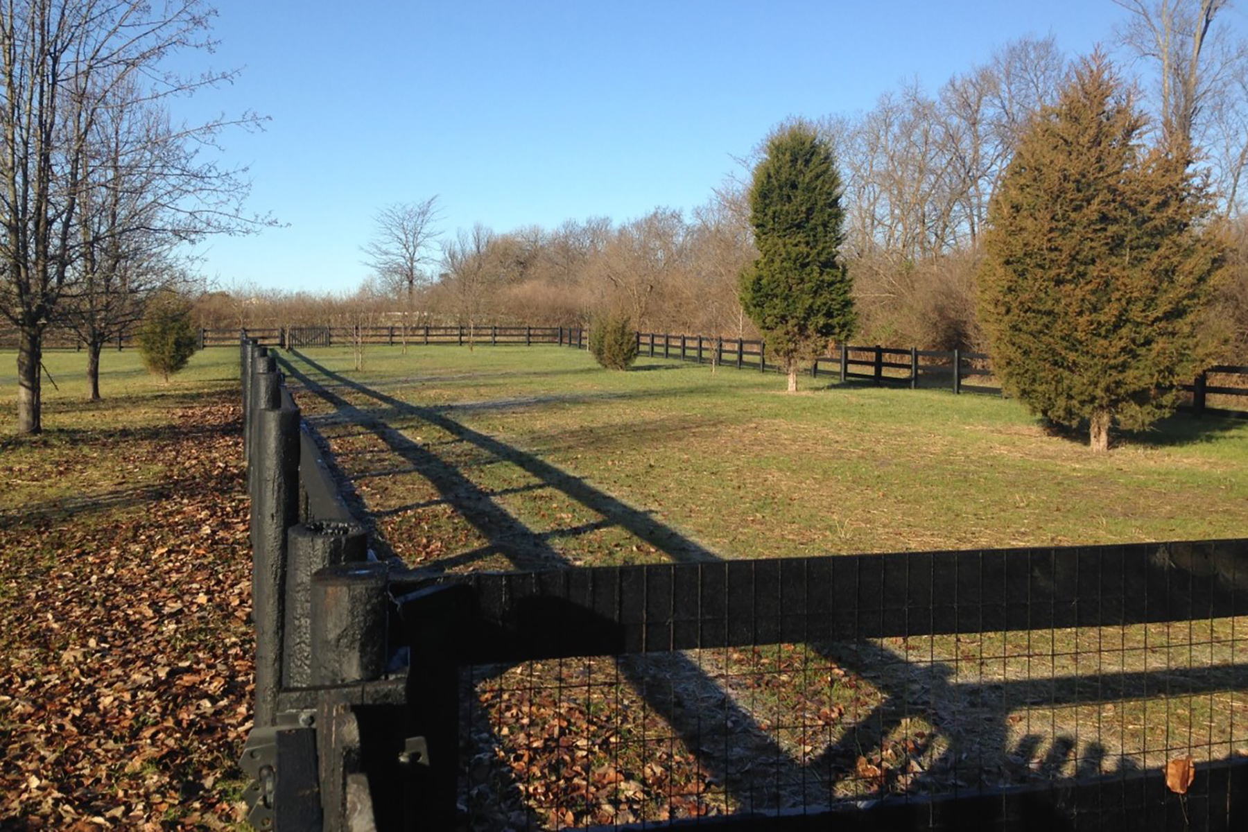 The Retreat at Carriage Hill Greenspace