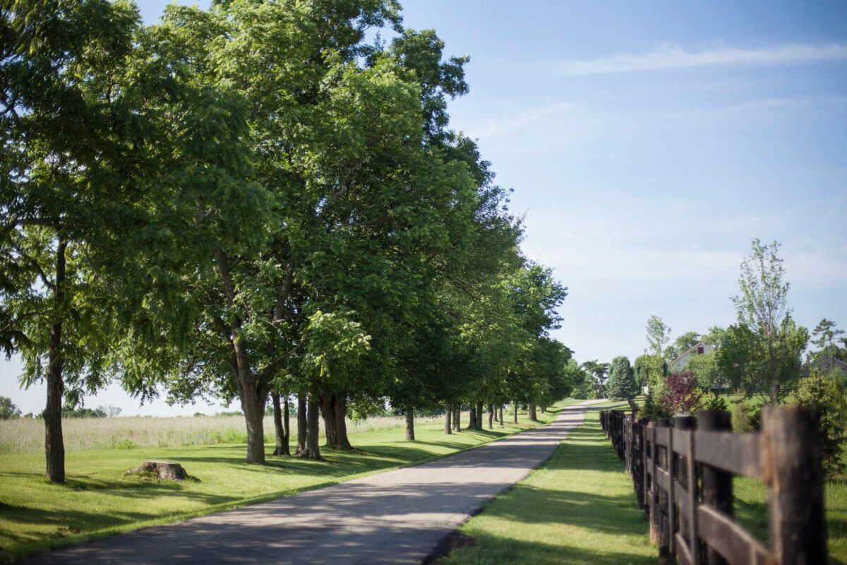 Carriage Hill Enclave Trails