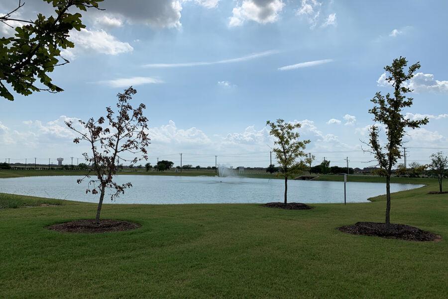 Sutton Fields Pond