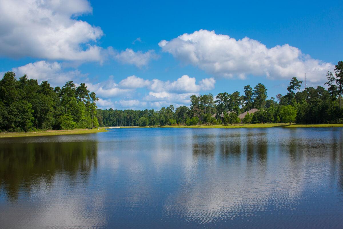 Woodtrace Lake