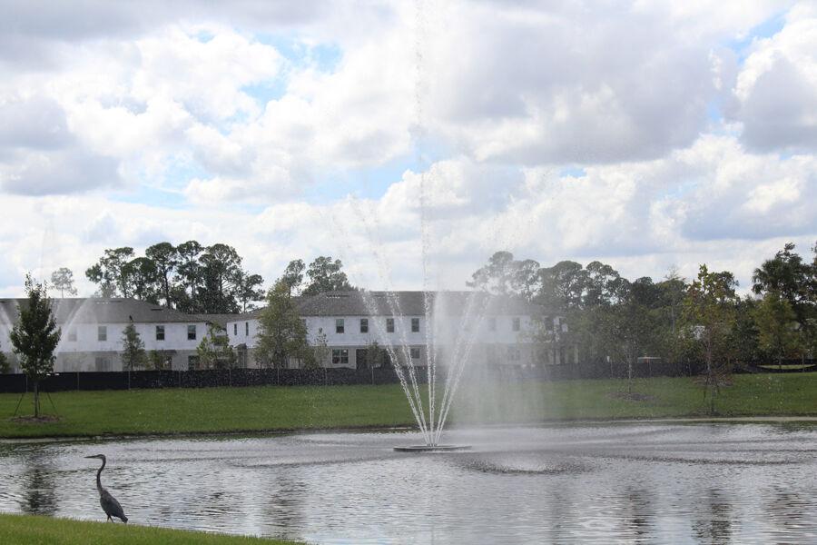 Towns at White Cedar Fountain