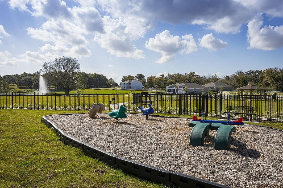 Hull Island Playground