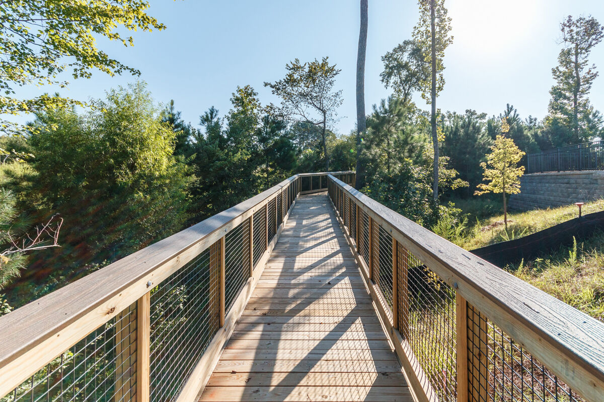 Andrews Chapel Trails