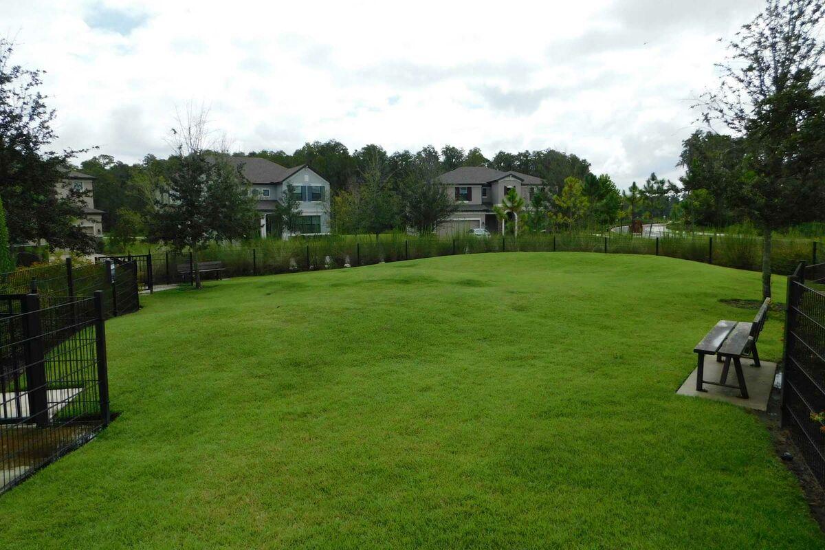 Starkey Ranch Albriton Park Greenspace