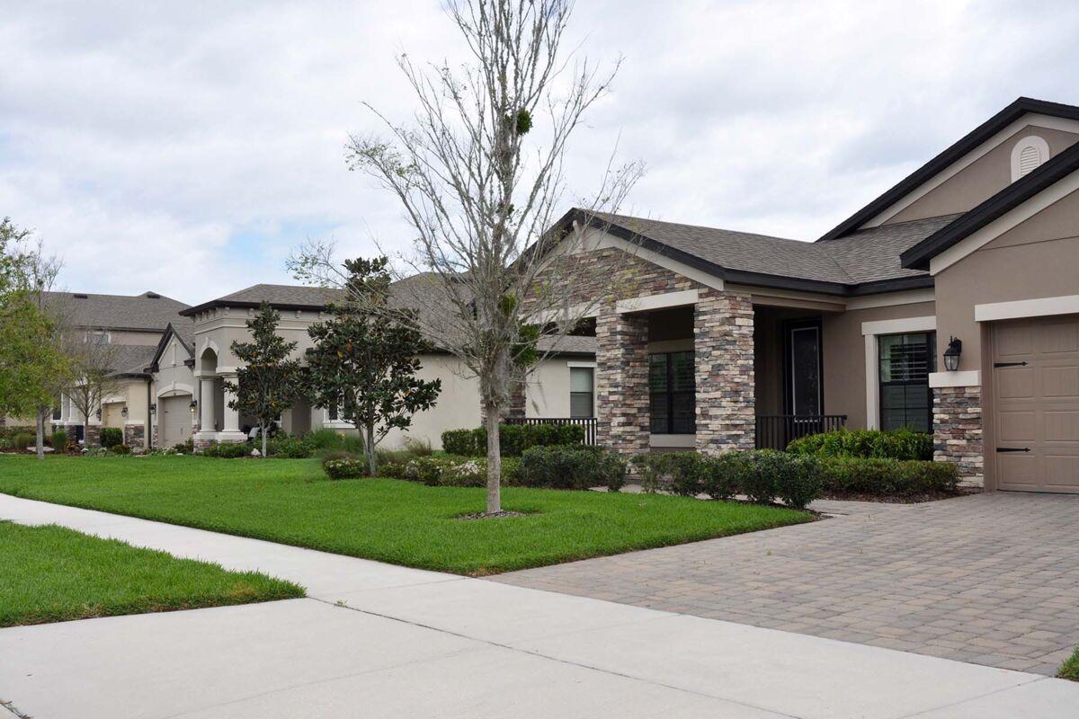 Starkey Ranch Albritton Park Streetscape
