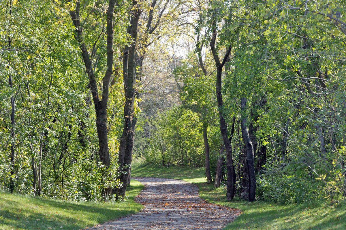 Bailey Meadows Prestige Trails