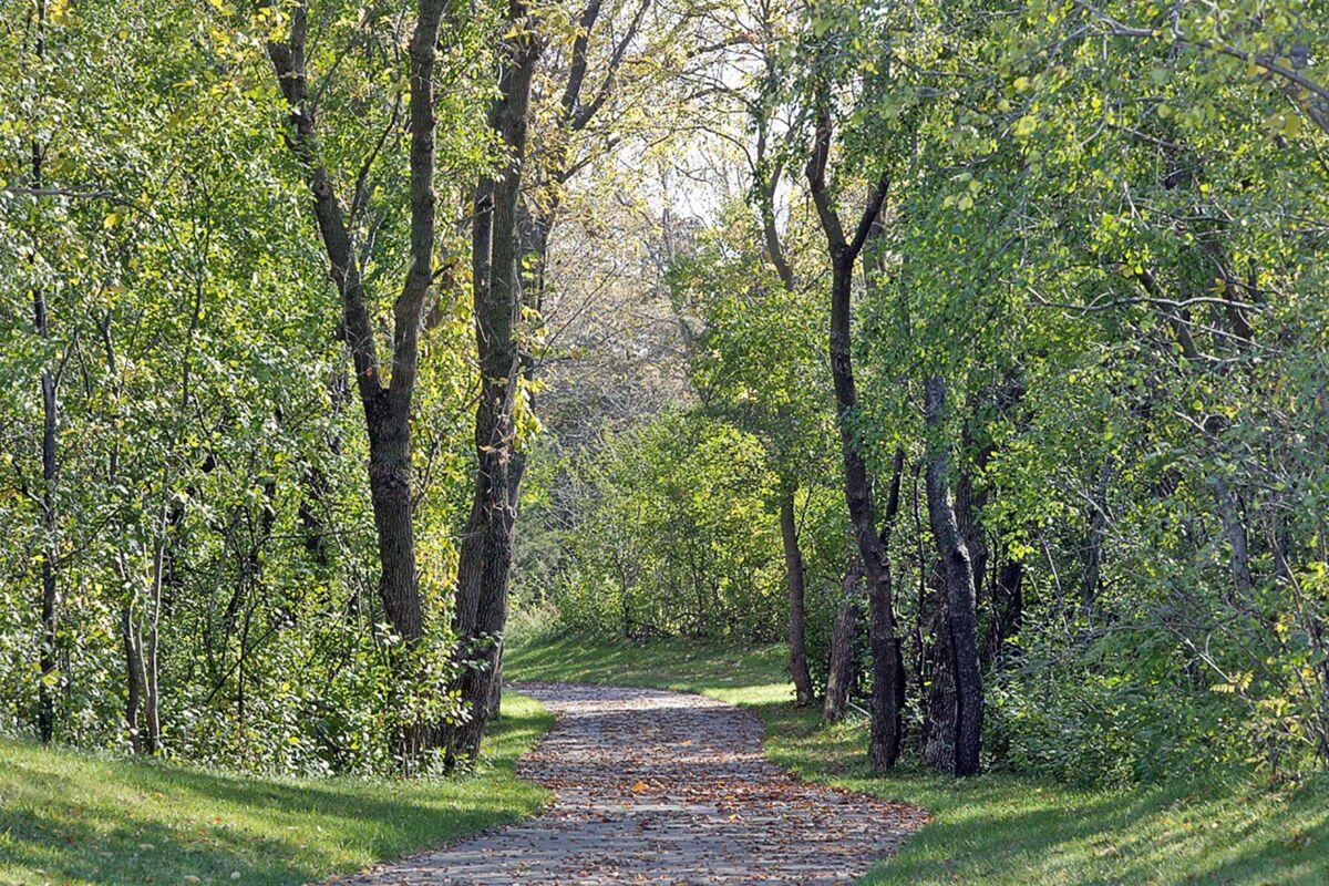 Bailey Meadows Hans Hagen Trails