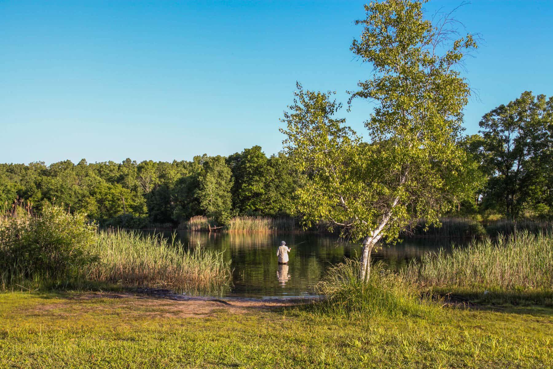 Green Oak Crossing Surrounding Area