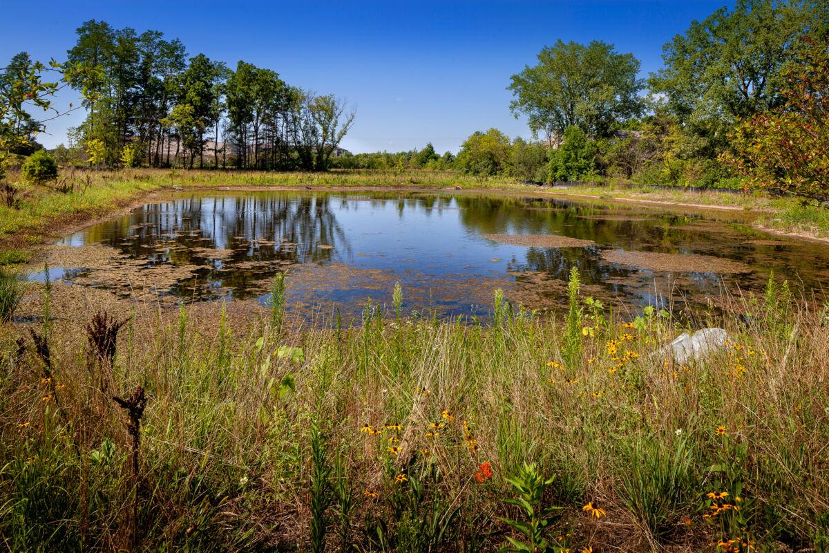 Lincolnshire Trails Pond