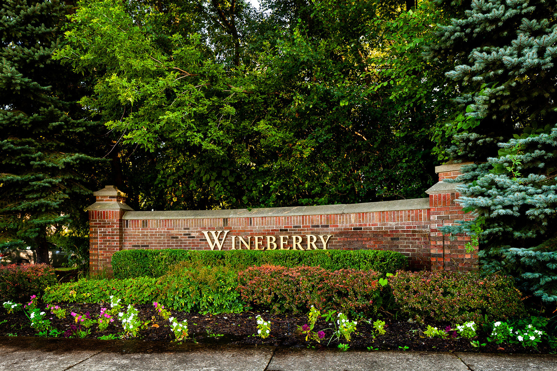 Wineberry Entrance