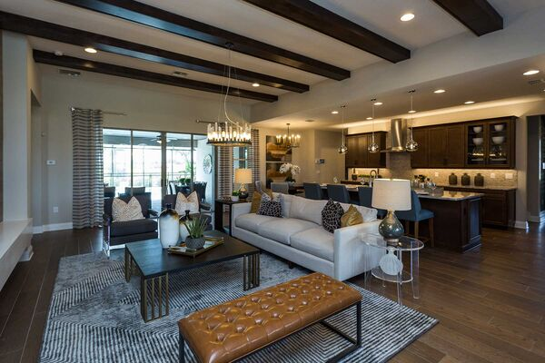 Open-Concept Living Room With Area Rug